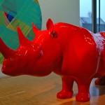 Red Rhino, Red Rhino